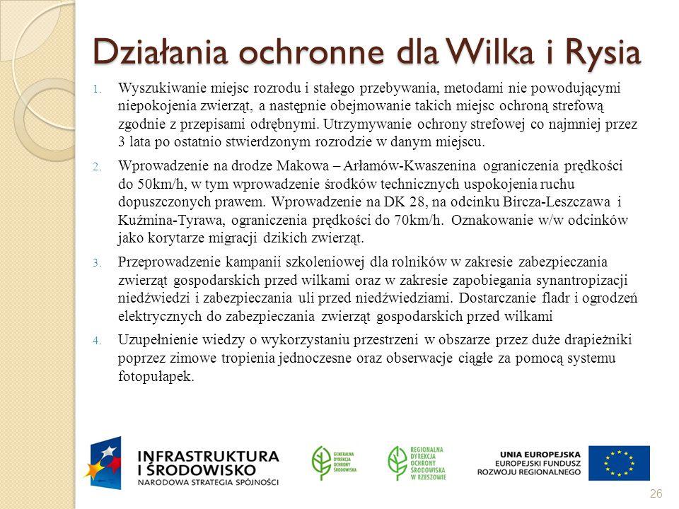 Działania ochronne dla Wilka i Rysia