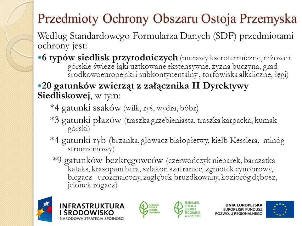 Przedmioty Ochrony Obszaru Ostoja Przemyska