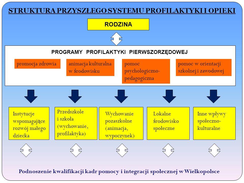 STRUKTURA PRZYSZŁEGO SYSTEMU PROFILAKTYKI I OPIEKI