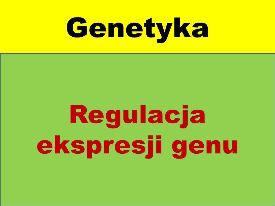 Regulacja ekspresji genu