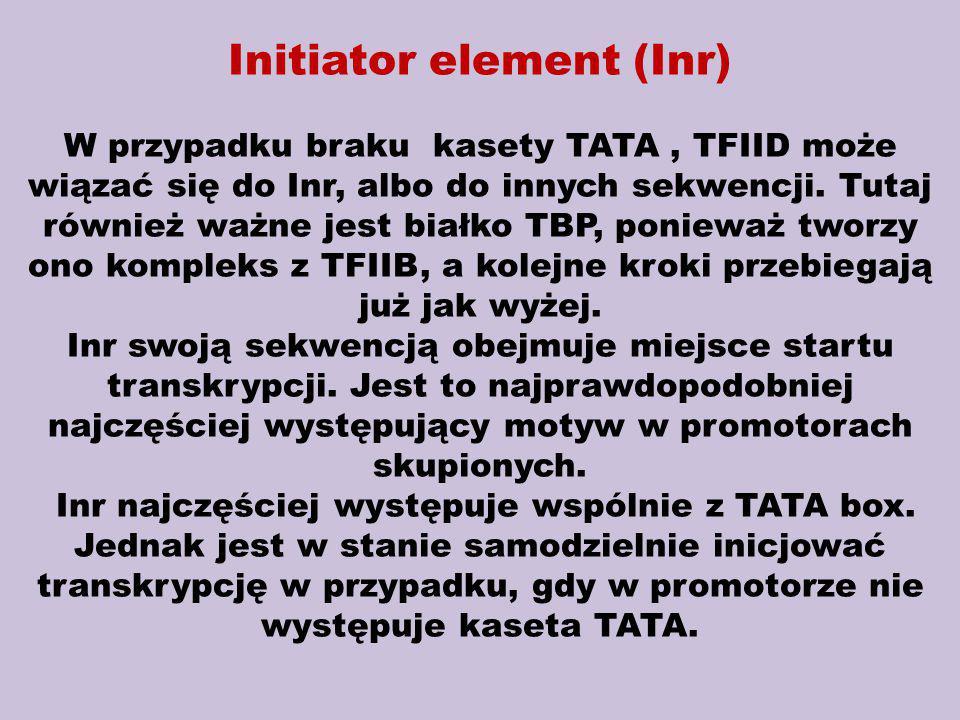 Initiator element (Inr) W przypadku braku kasety TATA , TFIID może wiązać się do Inr, albo do innych sekwencji.