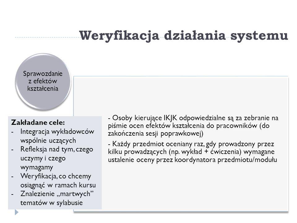 Weryfikacja działania systemu