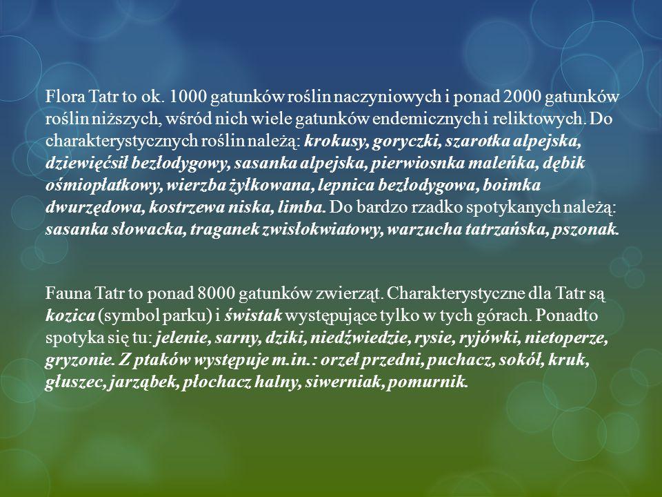 Flora Tatr to ok.