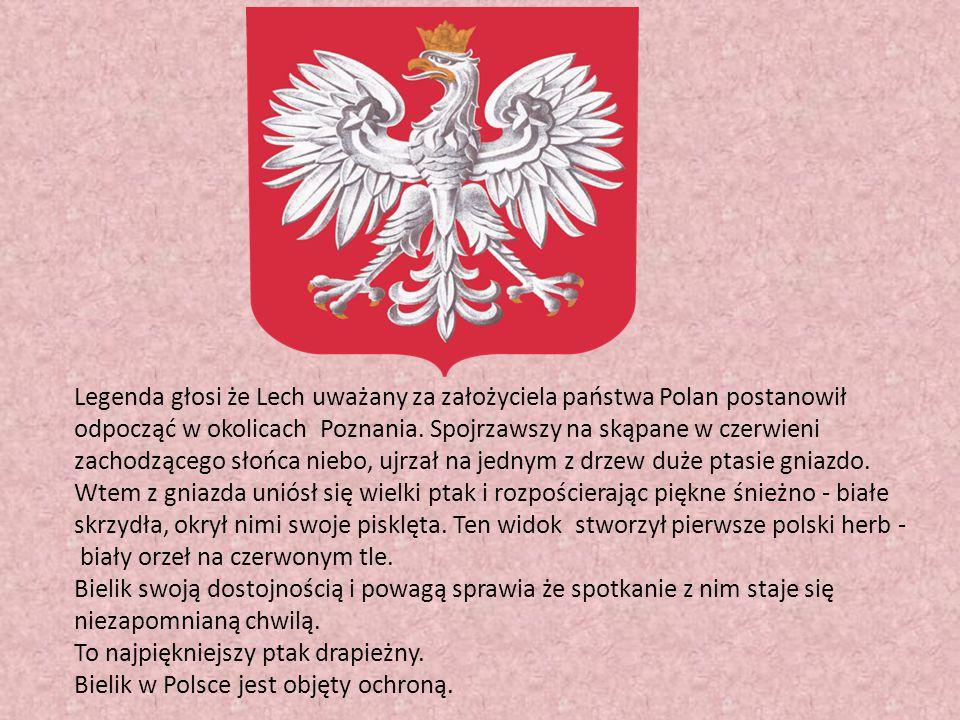 Legenda głosi że Lech uważany za założyciela państwa Polan postanowił odpocząć w okolicach Poznania. Spojrzawszy na skąpane w czerwieni zachodzącego słońca niebo, ujrzał na jednym z drzew duże ptasie gniazdo. Wtem z gniazda uniósł się wielki ptak i rozpościerając piękne śnieżno - białe skrzydła, okrył nimi swoje pisklęta. Ten widok stworzył pierwsze polski herb -