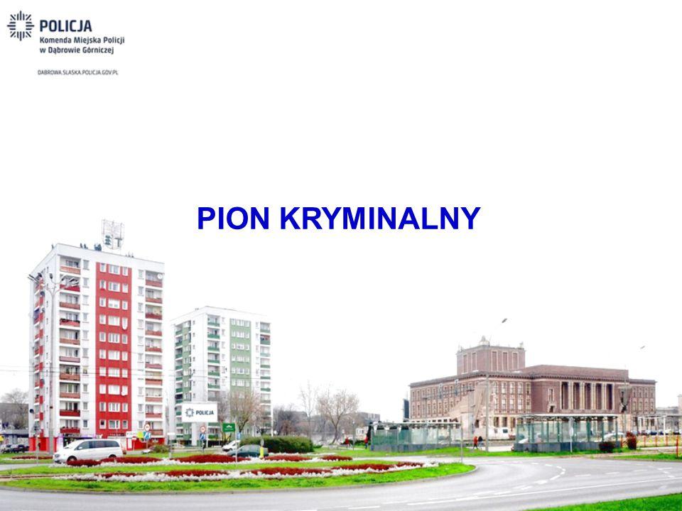 PION KRYMINALNY
