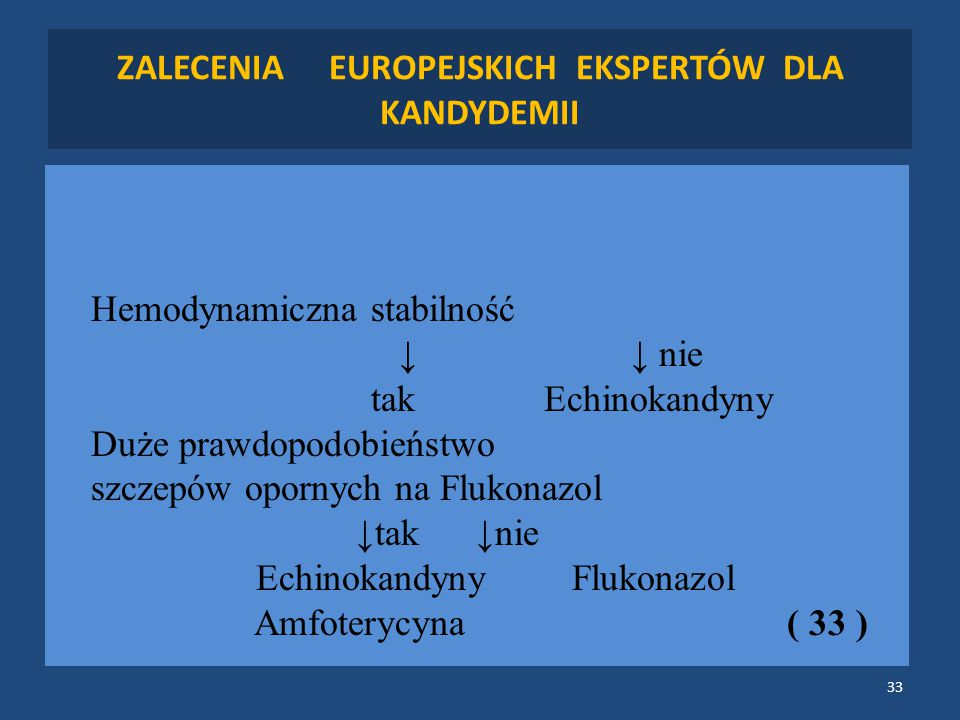 ZALECENIA EUROPEJSKICH EKSPERTÓW DLA KANDYDEMII