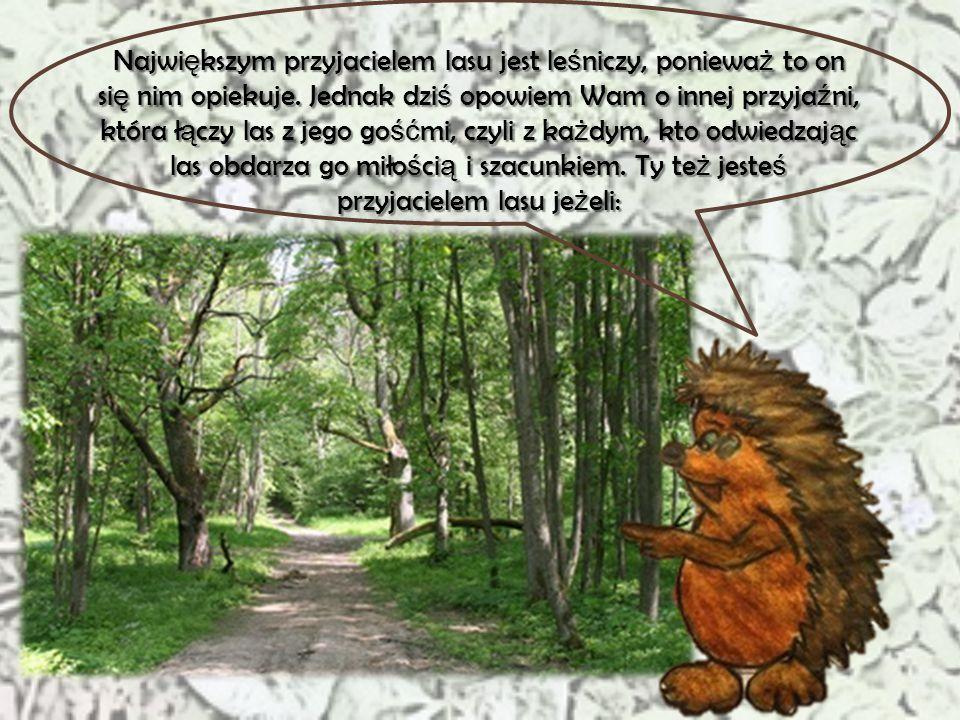 Największym przyjacielem lasu jest leśniczy, ponieważ to on się nim opiekuje.