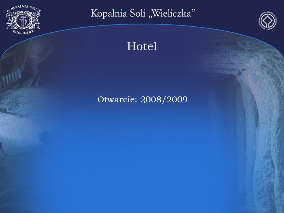 Hotel Otwarcie: 2008/2009