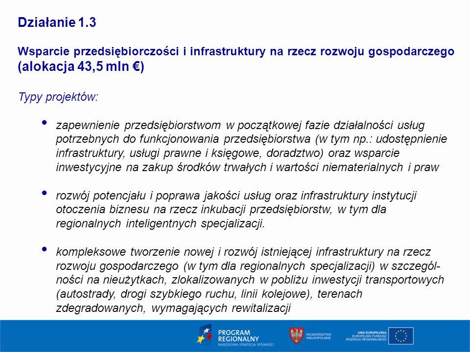 1111 Działanie 1.3. Wsparcie przedsiębiorczości i infrastruktury na rzecz rozwoju gospodarczego (alokacja 43,5 mln €)