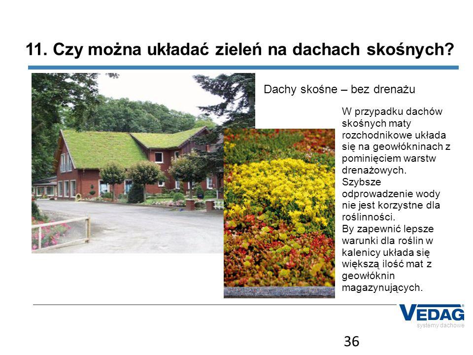11. Czy można układać zieleń na dachach skośnych