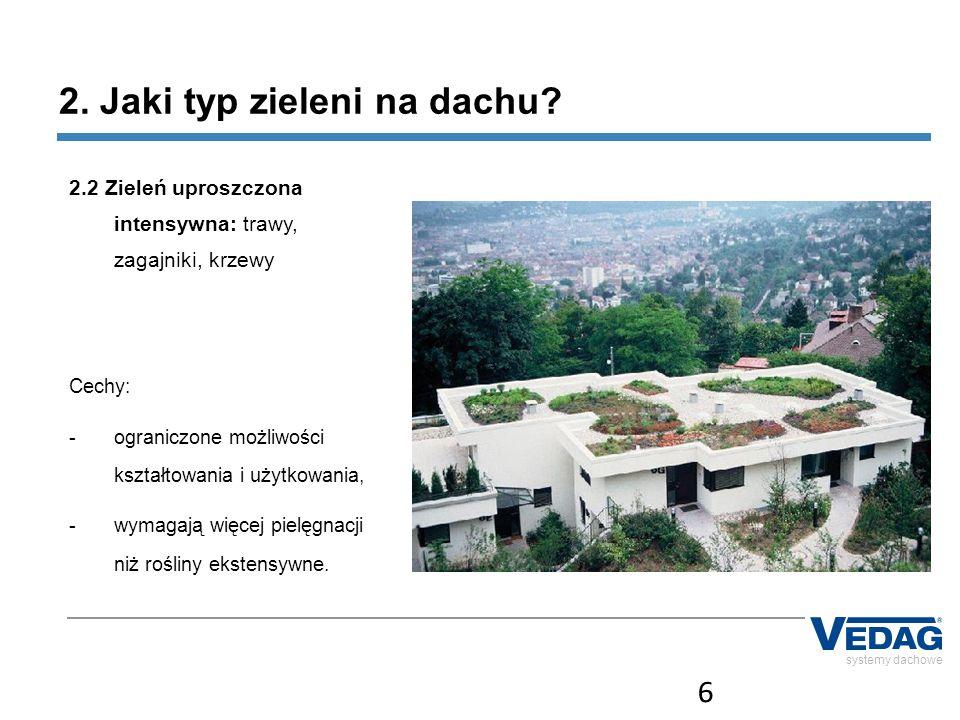 2. Jaki typ zieleni na dachu