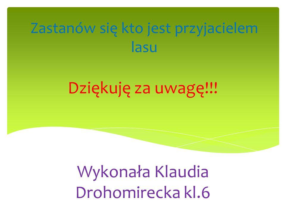 Dziękuję za uwagę!!! Wykonała Klaudia Drohomirecka kl.6