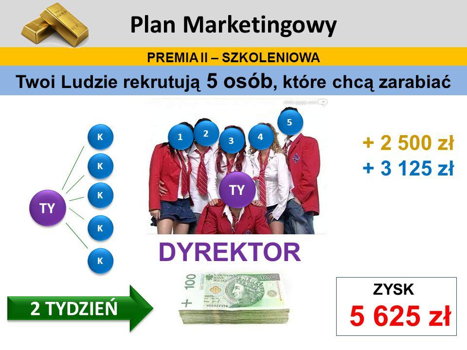 Plan Marketingowy DYREKTOR + 2 500 zł + 3 125 zł 2 TYDZIEŃ