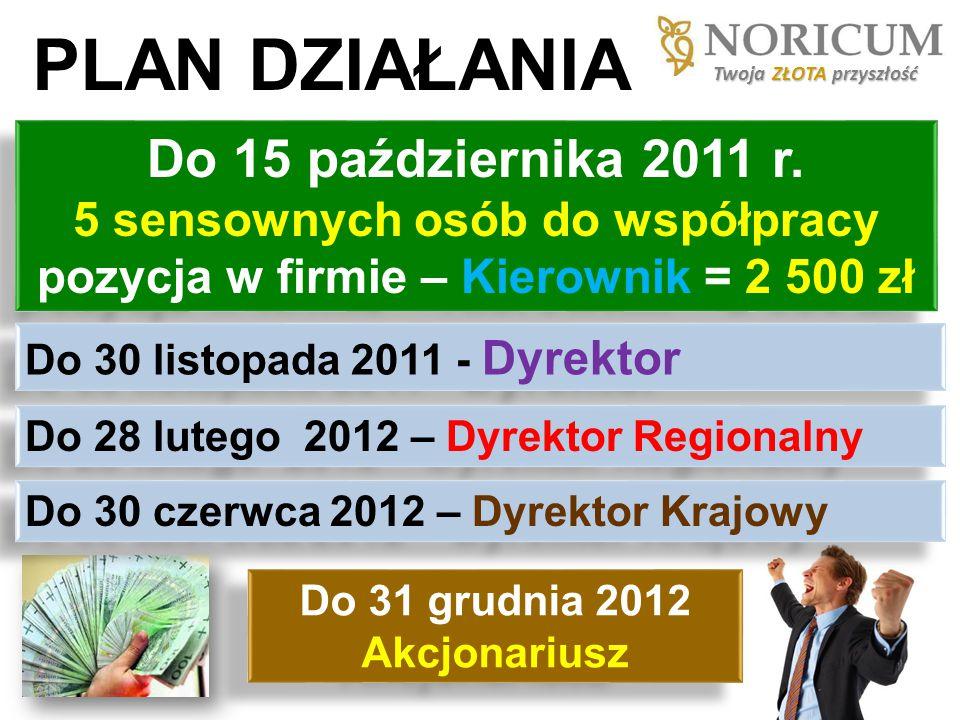 Do 31 grudnia 2012 Akcjonariusz