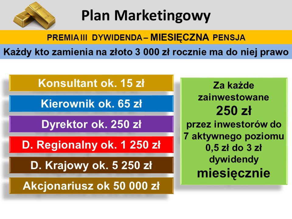 Plan Marketingowy 250 zł Konsultant ok. 15 zł Kierownik ok. 65 zł