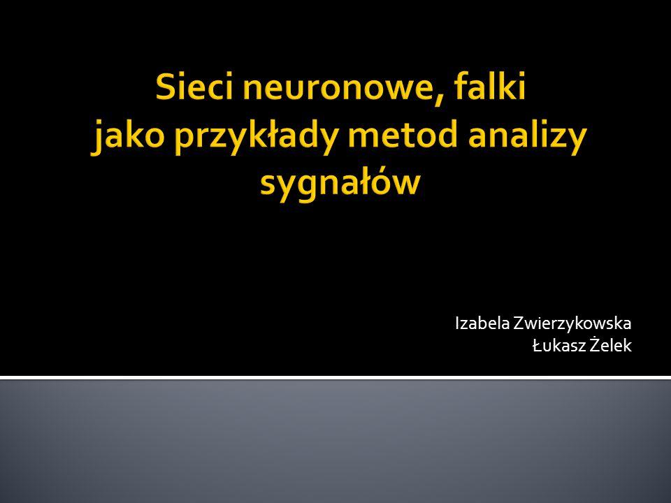 Sieci neuronowe, falki jako przykłady metod analizy sygnałów