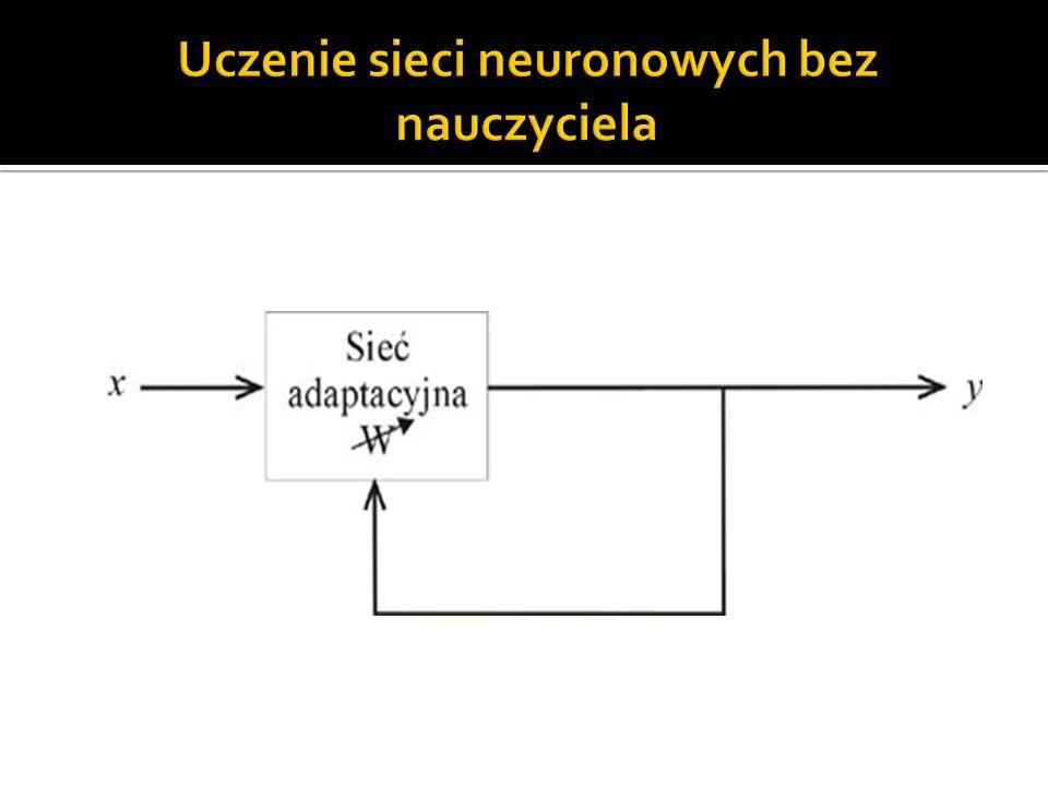 Uczenie sieci neuronowych bez nauczyciela