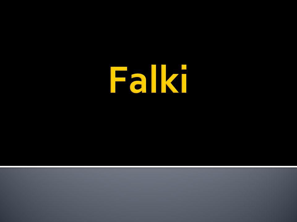 Falki