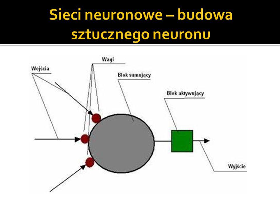 Sieci neuronowe – budowa sztucznego neuronu