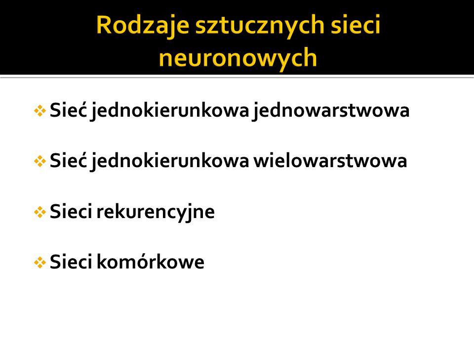 Rodzaje sztucznych sieci neuronowych