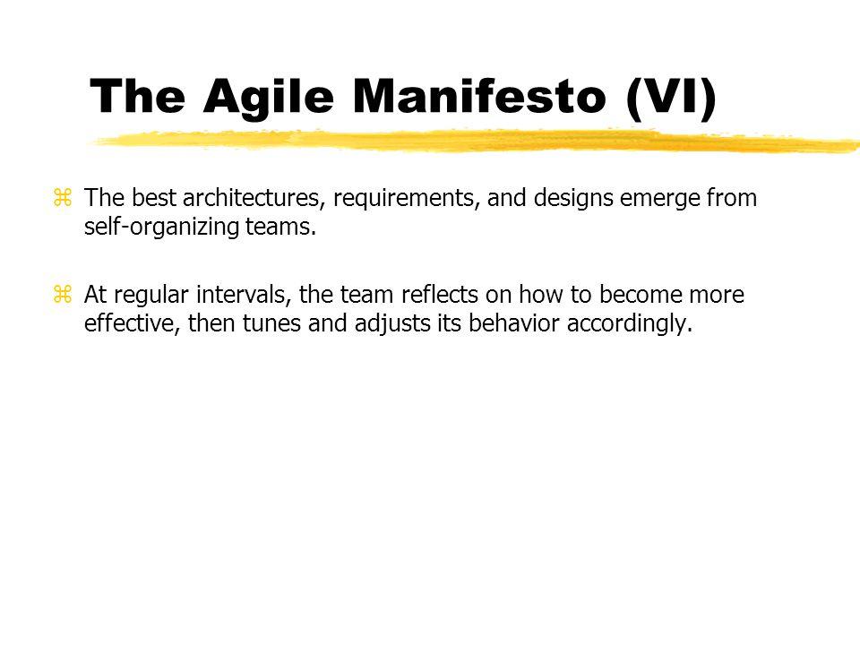 The Agile Manifesto (VI)
