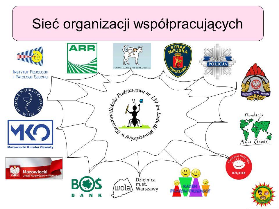 Sieć organizacji współpracujących