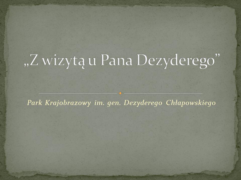 """""""Z wizytą u Pana Dezyderego"""