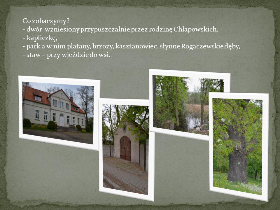 Co zobaczymy - dwór wzniesiony przypuszczalnie przez rodzinę Chłapowskich, - kapliczkę,