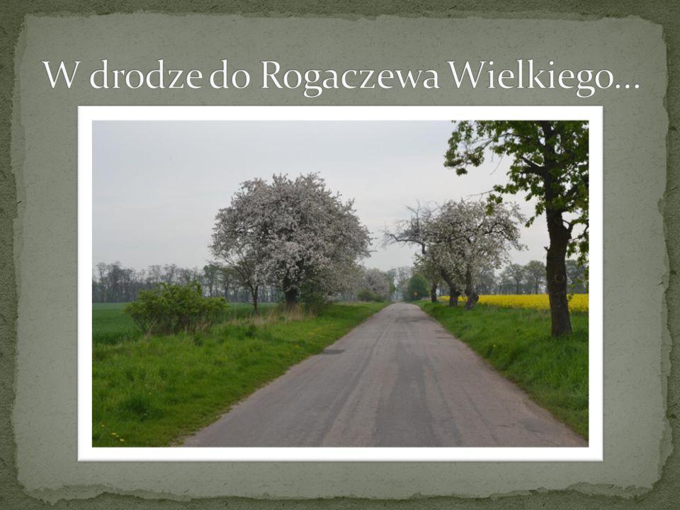 W drodze do Rogaczewa Wielkiego…
