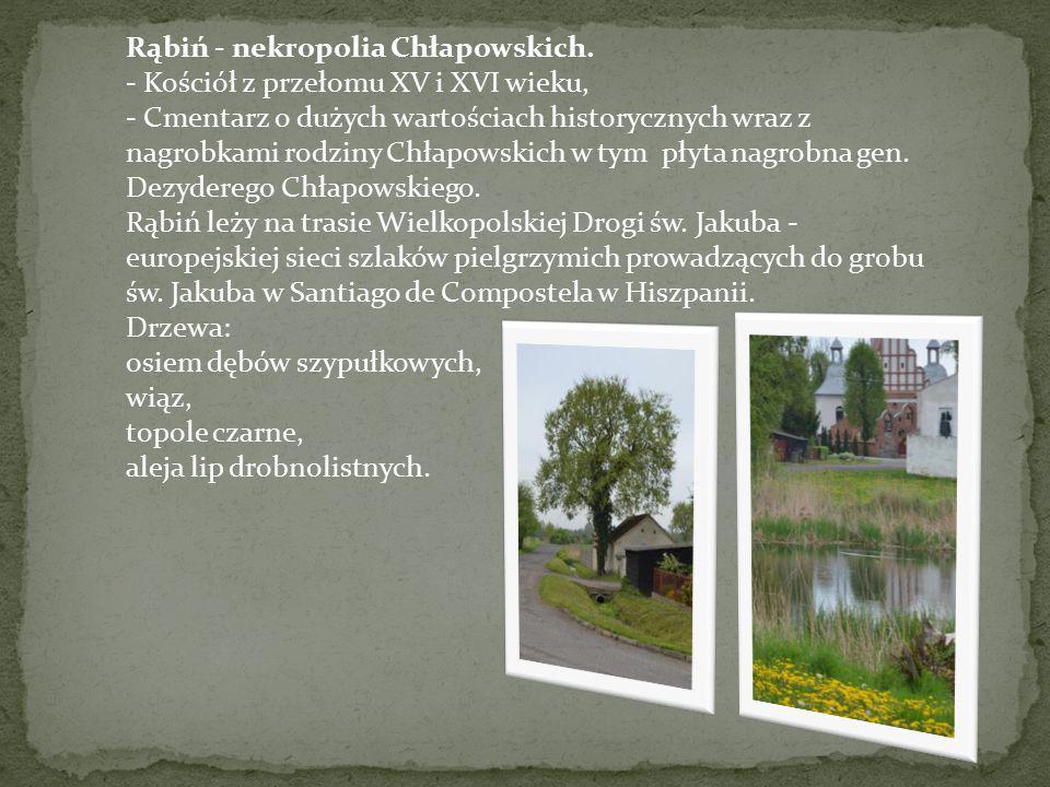 Rąbiń - nekropolia Chłapowskich.