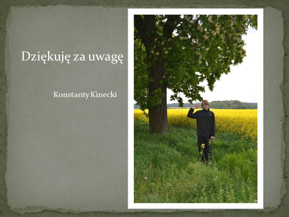 Dziękuję za uwagę Konstanty Kinecki