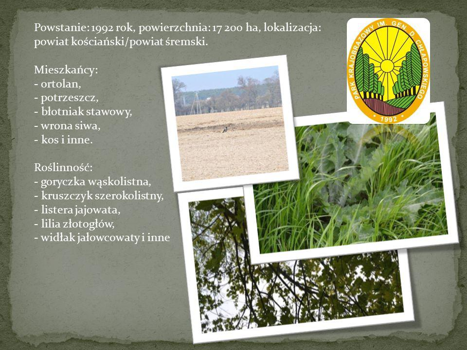Powstanie: 1992 rok, powierzchnia: 17 200 ha, lokalizacja: