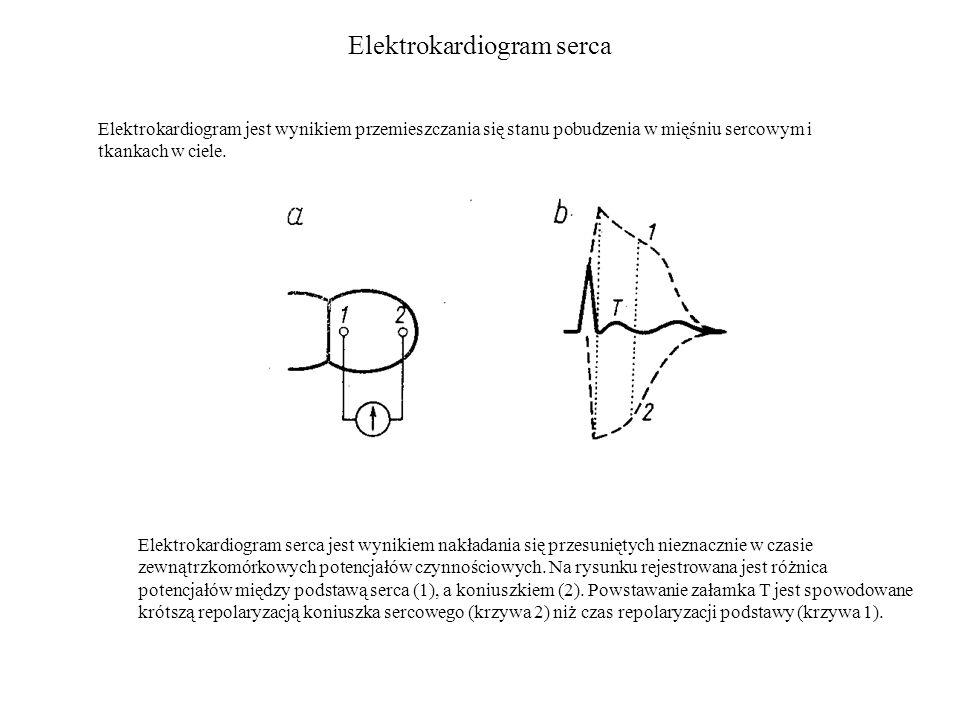 Elektrokardiogram serca