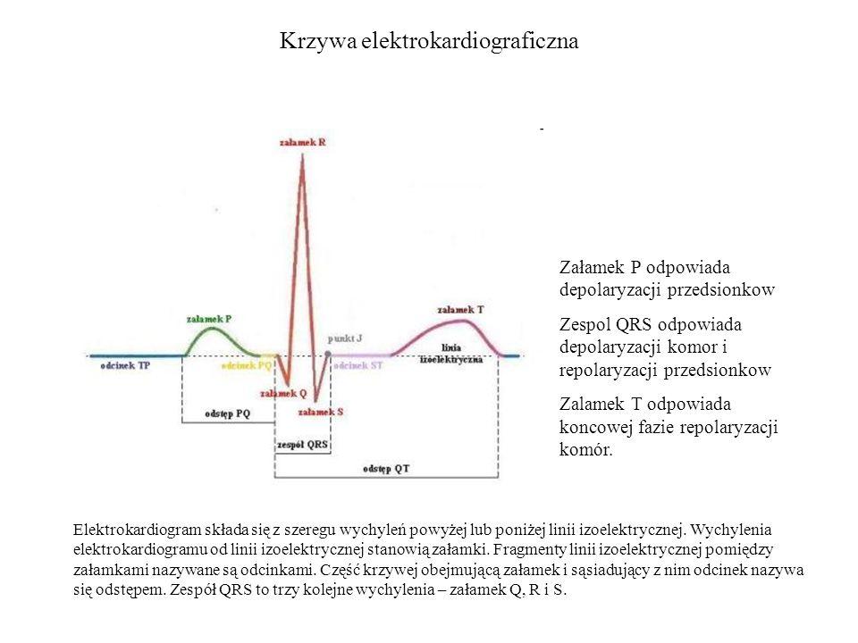 Krzywa elektrokardiograficzna