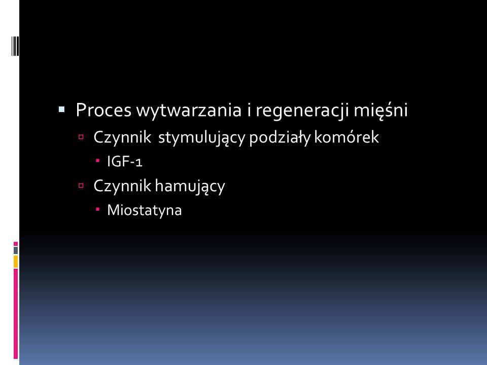 Proces wytwarzania i regeneracji mięśni