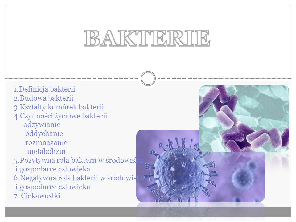 BAKTERIE 1.Definicja bakterii 2.Budowa bakterii