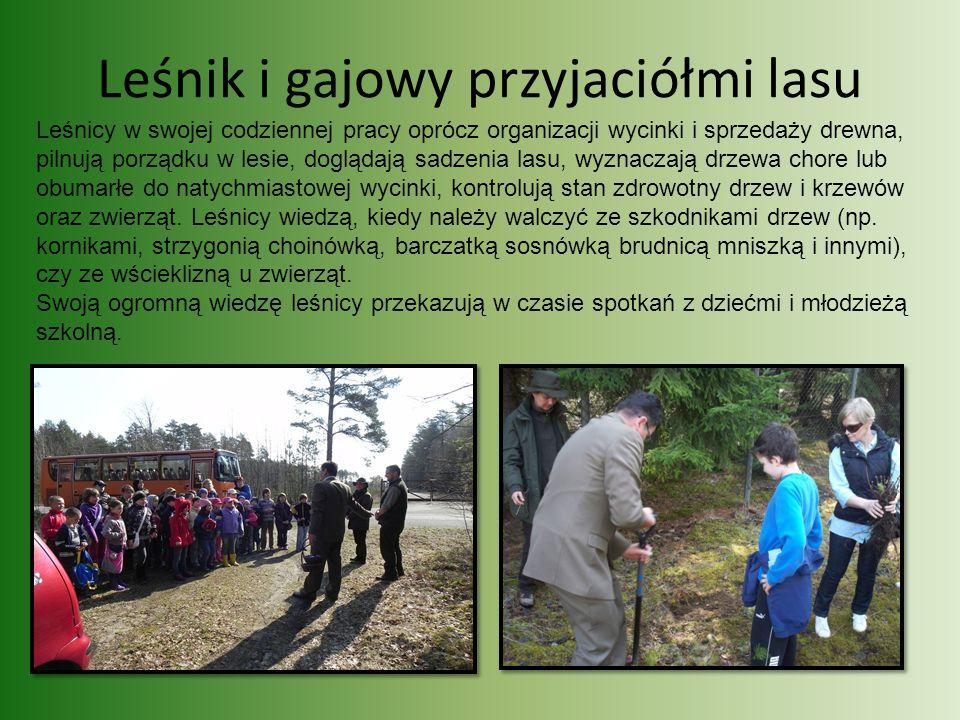 Leśnik i gajowy przyjaciółmi lasu