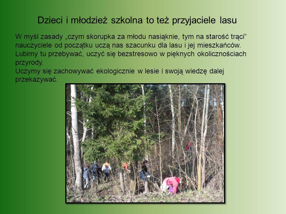 Dzieci i młodzież szkolna to też przyjaciele lasu