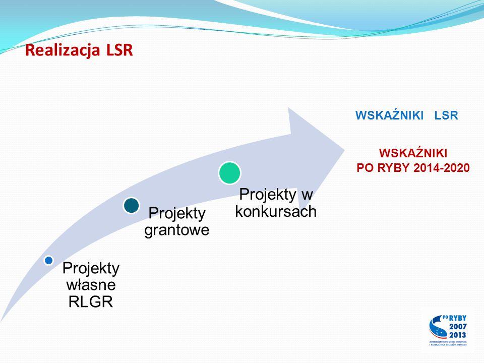 Realizacja LSR Projekty w konkursach Projekty grantowe