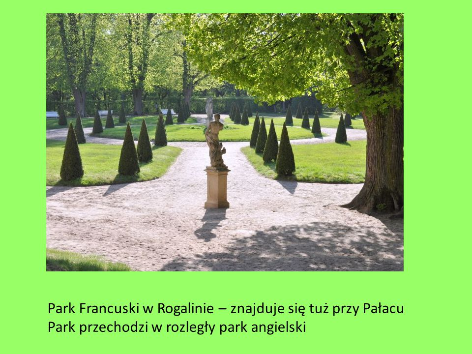 Park Francuski w Rogalinie – znajduje się tuż przy Pałacu
