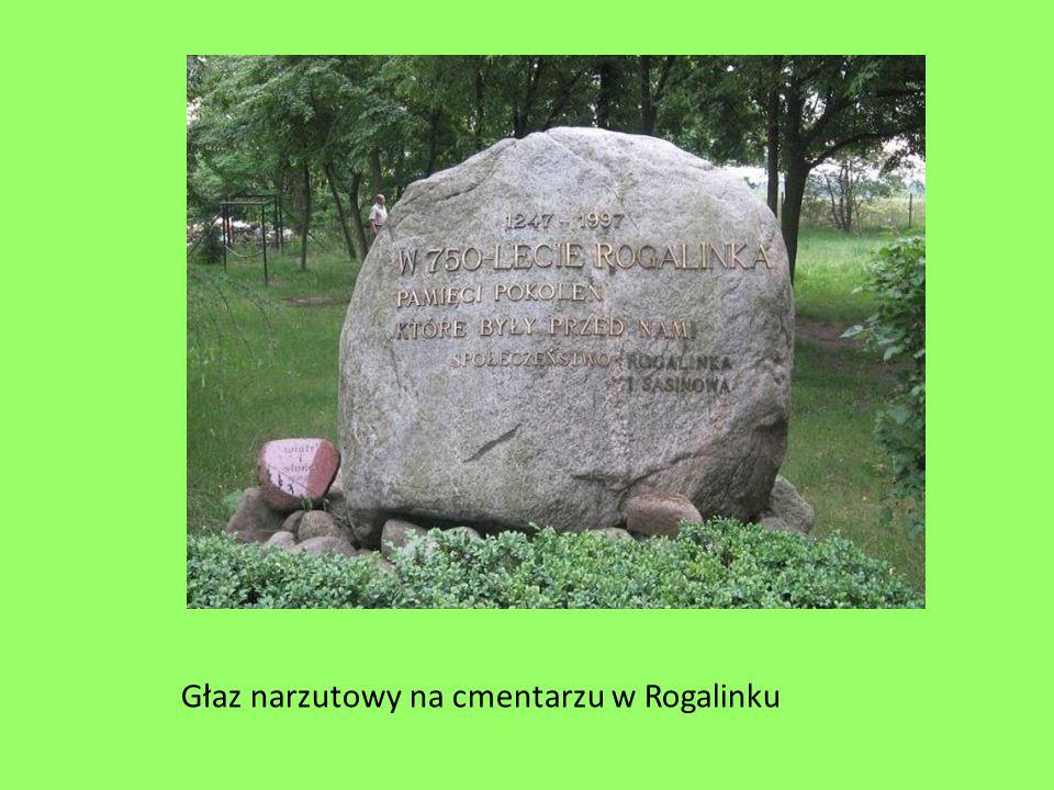 Głaz narzutowy na cmentarzu w Rogalinku