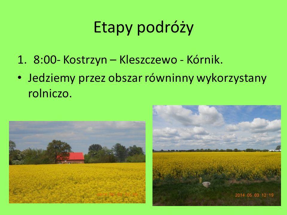 Etapy podróży 8:00- Kostrzyn – Kleszczewo - Kórnik.