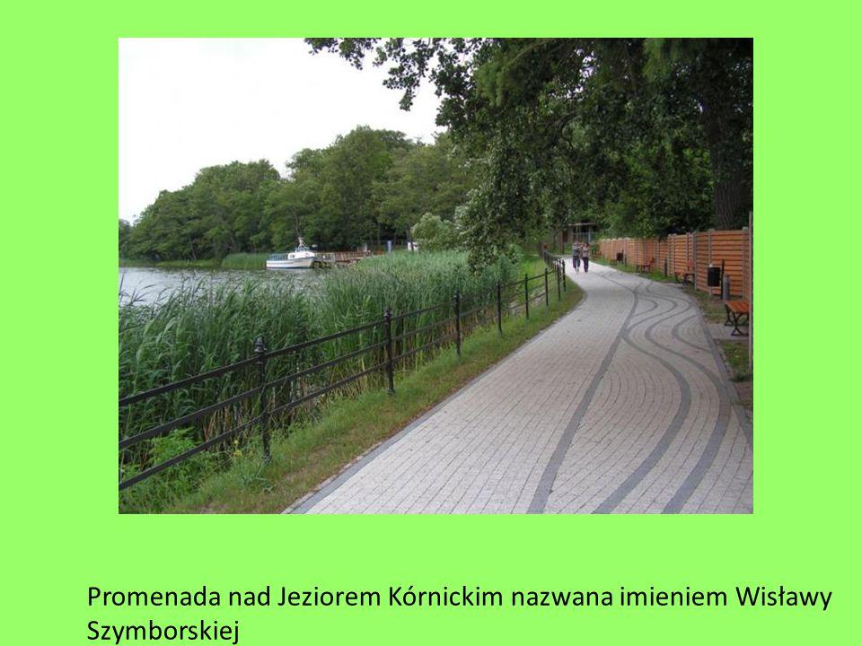 Promenada nad Jeziorem Kórnickim nazwana imieniem Wisławy Szymborskiej