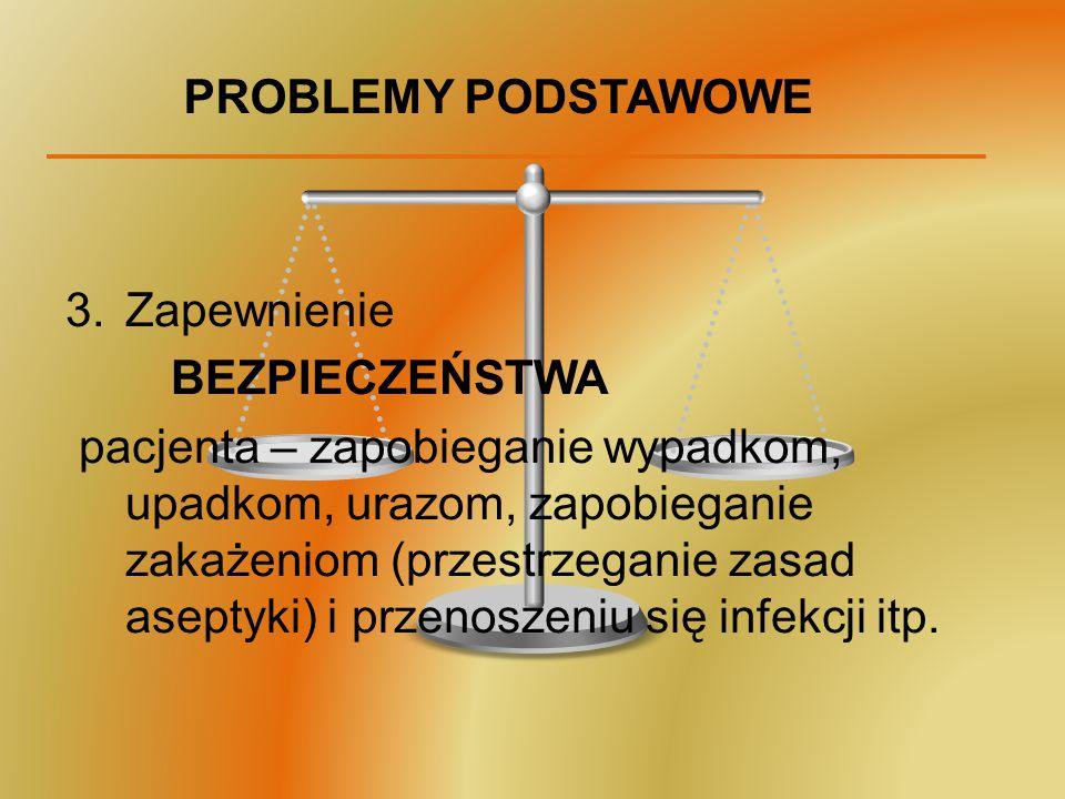 PROBLEMY PODSTAWOWE Zapewnienie. BEZPIECZEŃSTWA.