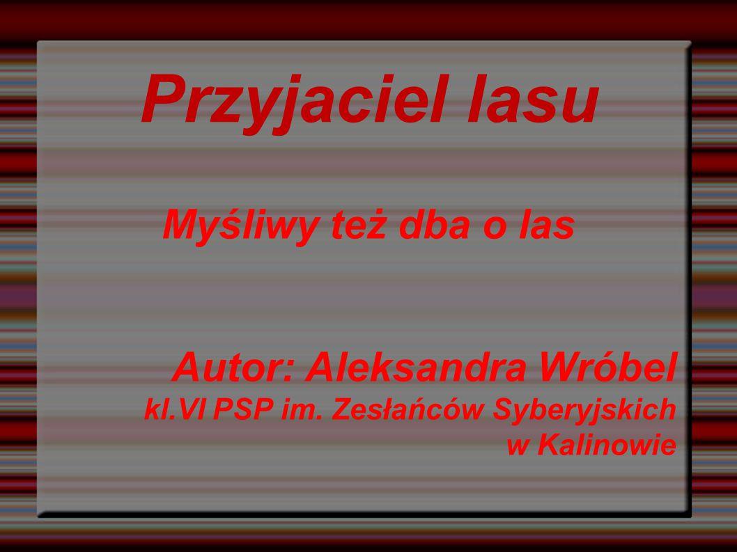 Przyjaciel lasu Myśliwy też dba o las Autor: Aleksandra Wróbel