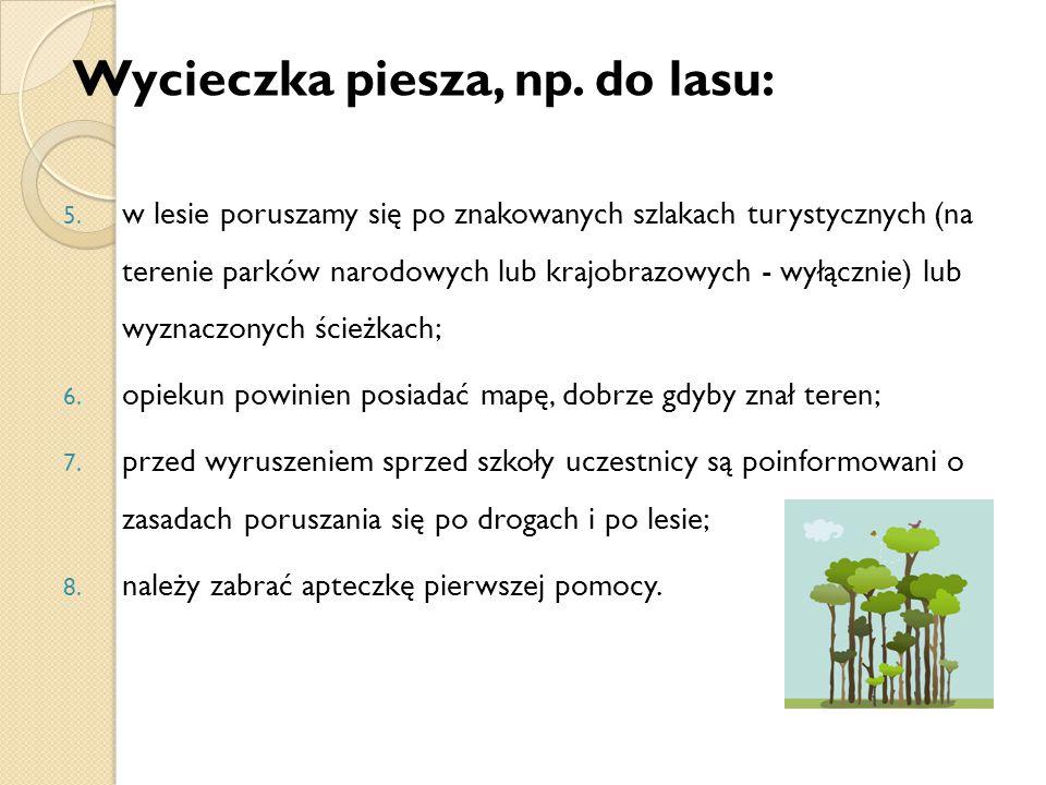 Wycieczka piesza, np. do lasu: