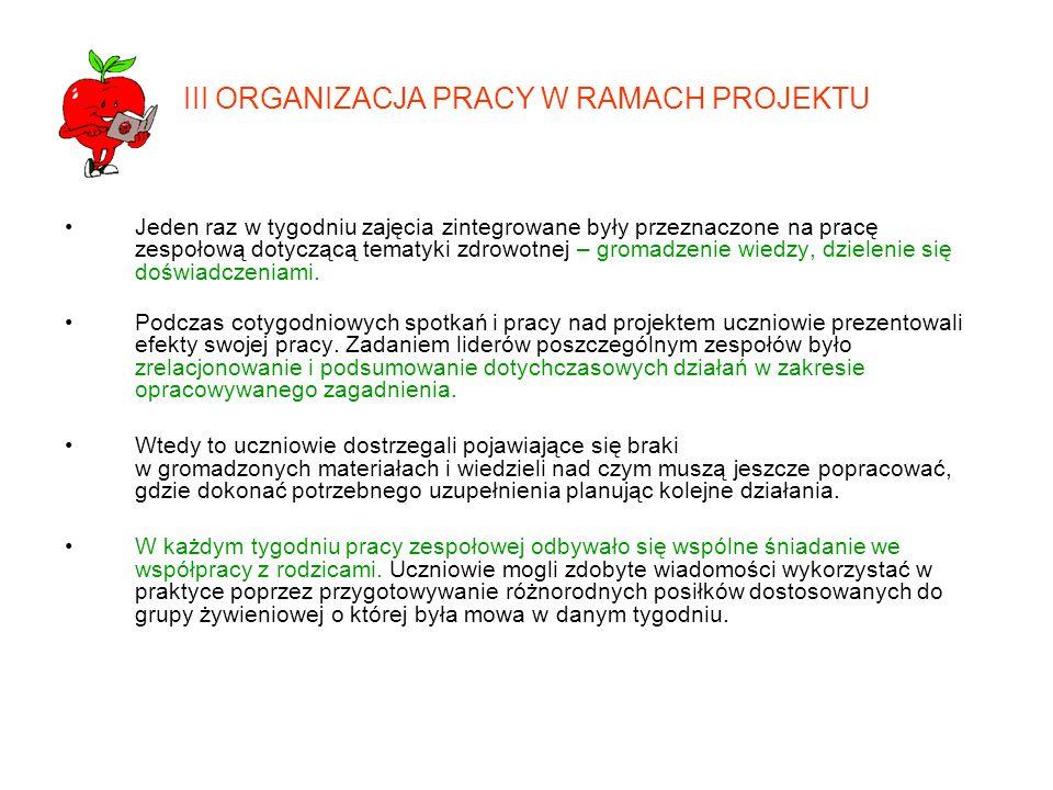 III ORGANIZACJA PRACY W RAMACH PROJEKTU