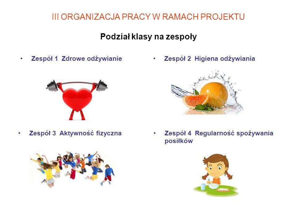 III ORGANIZACJA PRACY W RAMACH PROJEKTU Podział klasy na zespoły
