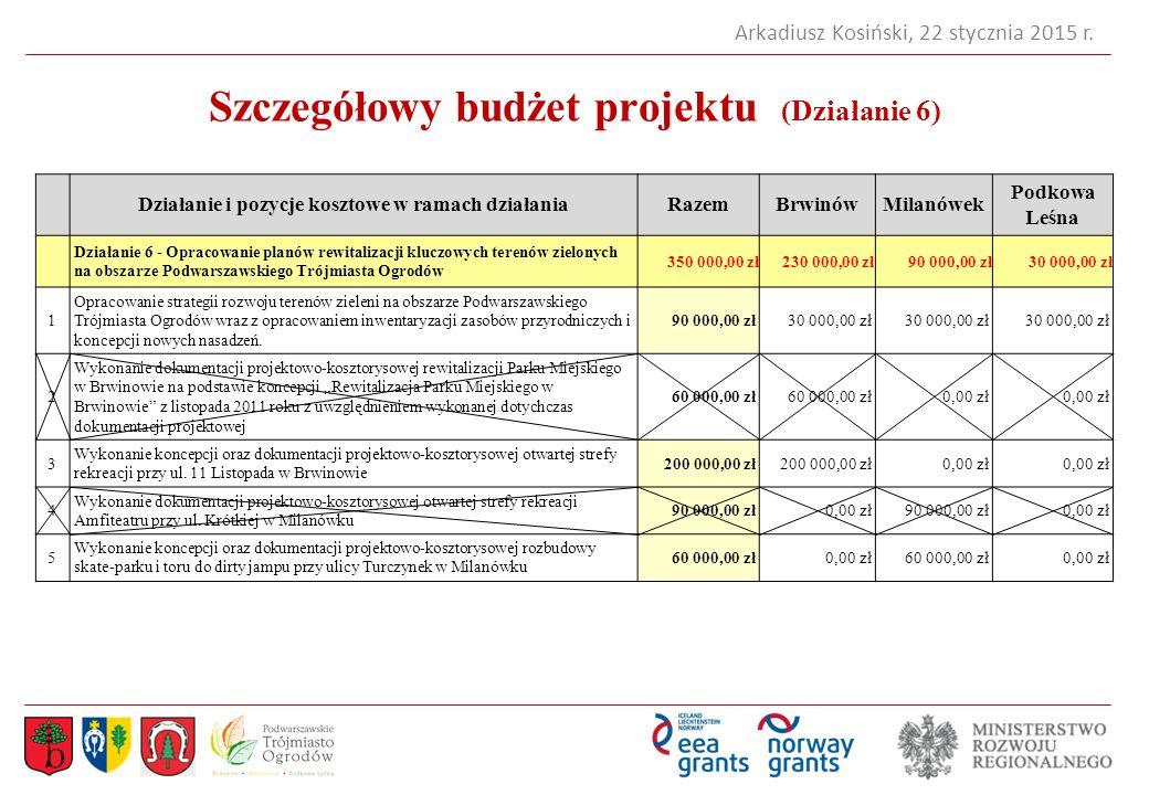 Szczegółowy budżet projektu (Działanie 6)