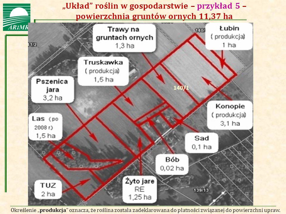 """""""Układ roślin w gospodarstwie – przykład 5 – powierzchnia gruntów ornych 11,37 ha"""
